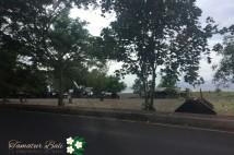 「バリ島現地食べ歩き情報」ドゥガナン村に行く途中に立ち寄った サテイ屋さん!